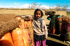 Children of Behsud peasants, care the carrots. (The Sergeant AGS (A city guy)) Tags: children urban urbanexploration afghanistan peasants carrots outdoors travelling travelformyjob