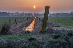 Cold sunset (Jan R. Ubels) Tags: olympusem1 2017 winter netherlands nederland drenthe tynaarlo vries avondrood zonsondergang sunset