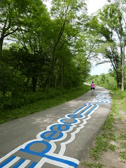 A-June2015 522 (PanAmPath.org) Tags: river for singing native earth x roadsworth june2015