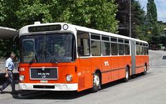 2003-07-25 - Lausanne, Maladière (lausanne1000) Tags: man bus public schweiz switzerland suisse tl transport lausanne autobus verkehr öv öffentlicher