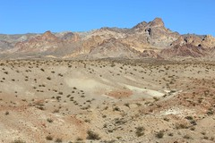 2011_11_30_3589.jpg (DrPKHouse) Tags: arizona unitedstates loco goldenvalley bouse