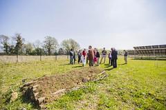 Willersey Solar farm