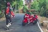 Approaching (Man Made Machines) Tags: motorcycle machine red ride rider green nature photography photo people walking superbike suzuki hayabusa