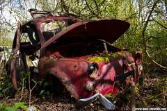 Casse auto - Fiat 500 (Deux-Chevrons.com) Tags: fiat500 fiat 500 car coche voiture auto automobile automotive derelict neglected abandon abandonned rust rusty rusted rouille épave wreck wrecked casseauto casse barn find barnfind