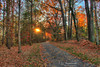 Walk This Way (J.L. Ramsaur Photography) Tags: jlrphotography nikond7200 nikon d7200 photography photo cookevilletn middletennessee putnamcounty tennessee 2016 engineerswithcameras cumberlandplateau photographyforgod thesouth southernphotography screamofthephotographer ibeauty jlramsaurphotography photograph pic cookevegas cookeville tennesseephotographer cookevilletennessee tennesseehdr hdr worldhdr hdraddicted bracketed photomatix hdrphotomatix hdrvillage hdrworlds hdrimaging hdrrighthererightnow sunset sun sunrays sunlight daytime sunglow orange yellow blue fall fallcolors fallleaves fallseason fallinthesouth colorful colors autumn autumncolors autumninthesouth autumnleaves falltrees autumntrees landscape southernlandscape nature outdoors god'sartwork nature'spaintbrush