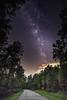 93% Humidity (adamkylejackson) Tags: milkyway lake lakes sky night nighttime longexposure humid humidity houston texas conroe lakeconroe lakeside forest pinetree ponderosa stars star astronomy astrophoto astrophotography lightpollution telescope
