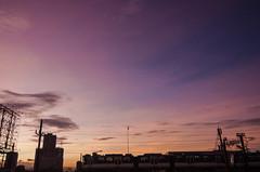 2) Twilight Express (Blue Nozomi) Tags: mrt metro rail transit train commute sky blue pink yellow twilight sunset manila philippines kiminonawa yourname your name