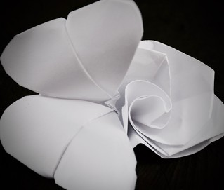 Just White Paper   HMM