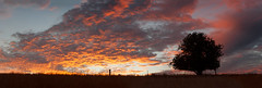 Summer sunset (jen.kelynack) Tags: summer sunset rural living country life victoria