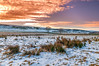 End of another day... (Lee~Harris) Tags: sunset sun field snow grass sky nature landscape landscapes scenic serene beauty beautiful beautifulexpression colour colours outdoors view uk rural farmland winter wintersun lowforce northpennines