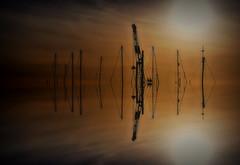 Cranes & masts (Steve.T.) Tags: masts mast crane reflection mirrorimage heybridgebasin nikon d7200 abstract nautical maritime boats yachts sigma18200
