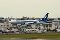All Nippon Airways (ANA) Boeing 737-881(WL) JA57AN (EK056) Tags: all nippon airways ana boeing 737881wl ja57an fukuoka airport