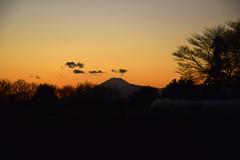 20170202_003_2 (まさちゃん) Tags: 富士山 シルエット silhouette 空 雲 光 長閑