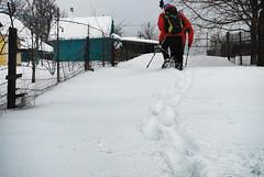 Коля упирается в снегах..