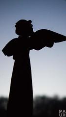 Broken angel (PaukSK) Tags: broken angel silhouette an with wing statuette canon m5 eos
