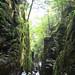 Franconia Notch State Park - Flume Hike