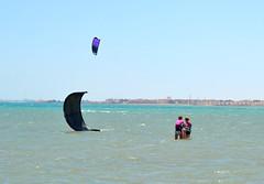 22_06_2015 (playkite) Tags: red sea kite egypt july kiteboarding kitesurfing kiting hurghada elgouna 2015       kitelessons  kiteinhurghada