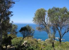 Tuesday Colours - Postcard from Cape Spartel - Where the Atlantic Meets the Mediteranean (Pushapoze (MASA)) Tags: morocco maroc atlantique mediteranean capspartel capespartel outstandingromanianphotographers explorejune242015