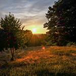 Coucher de soleil #5 thumbnail