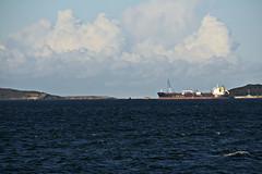 2015 Sydney: Botany Bay #27 (dominotic) Tags: beach water plane airplane boat yacht jet sydney australia nsw newsouthwales watersports tasmansea qantas botanybay tanker sydneyairport brightonlesands portbotany 2015 penalcolony airportrunway sydneykingsfordsmithairport australianpenalsettlement