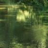 fluvius (vertblu) Tags: summer abstract reflection green reflections stream teal greens emerald shimmering abstrakt shadesofgreen reflectedlight abstractlandscape reflectedtrees reflectedfoliage greenbeautyforlife vertblu