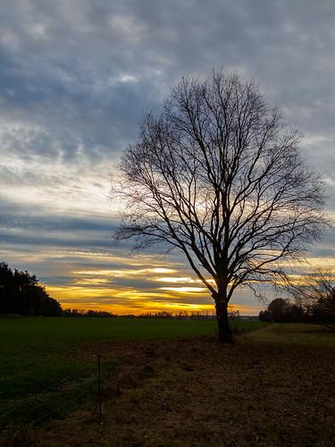 Sonnenuntergang im Fläming 3