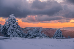 Sunset on the mountain (Vagelis Pikoulas) Tags: mountains mountain mount kithairwnas kithaironas greece january winter 2017 canon 6d tamron 70200mm vc sun sunset tree trees sky clouds cloud cloudy snow cold