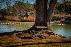 Happy Bench Monday (Jims_photos) Tags: blanco texas water trees outdoor outside adobelightroom adobephotoshop shadows sunnyday sunrise daytime happybenchmonday jimallen lightroom landscape txpark benchmonday blancotexas blancoriver blancostatepark nopeople