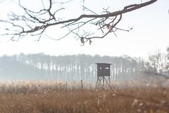 Wintersonne (photalena) Tags: germendorf wiese 7dwf lensbaby landscape composerpro edge80