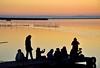 Pasión por la fotografía! (ZAP.M) Tags: albufera atardecer sunset puestadesol siluetas contraluz laalbufera valencia comunidadvalenciana españa flickr zapm mpazdelcerro nikon nikond5300 paisaje naturaleza nature