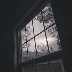 Cloudy morning The view out my window early yesterday morning. Not exactly inviting but we need the rain so badly. #clouds #window #sky #outdoors #nature #blackandwhite #blackandwhitephotography #bnw_drama #bnw_legit #bnw_captures #gf_bnw #bnwmaster #LA # (dewelch) Tags: ifttt instagram cloudy morning the view out window early yesterday not exactly inviting but we need rain badly clouds sky outdoors nature blackandwhite blackandwhitephotography bnwdrama bnwlegit bnwcaptures gfbnw bnwmaster la losangeles iglosangeles whereamila instalosangeles caligrammers lagrammers losangelesgrammers discoverla conquerla unlimitedlosangeles californiacaptures uglagrammers