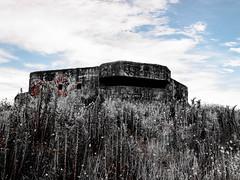 WW2 Abandoned Bunker 6 (Ryan Bourke) Tags: ww2 bunker war world sand abandoned lost dead haunted
