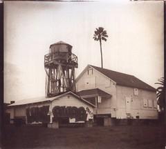 Luni Awae pals (efo) Tags: altprocess vandyke richmond altixiii kodak2238 diafine california watertank house palm graffiti bw film