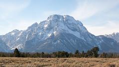 I think this is Mt. Moran (Alaskan Dude) Tags: travel usa wyoming grandtetonnationalpark grandteton nationalparks mountains landscape scenery schwabacherlanding