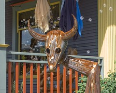 Gassy Bull 3391 A (jim.choate59) Tags: metal sculpture bubbles whimsical bull cow summer play jchoate storefront