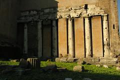 Rome 2010 973