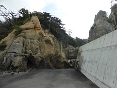 Uglifying natural beauty (Stop carbon pollution) Tags: japan 日本 honshuu 本州 touhoku 東北 miyagiken 宮城県