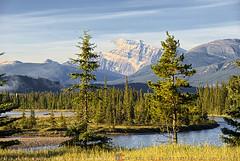 Icefield parkway, Jasper (T   J ) Tags: canada nikon jasper banff d80 nikon18200mmf3556