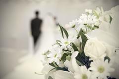 IMG_5558 (ksv2046) Tags: wedding bw ceremony wed