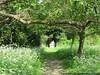 IMG_9747 (SandyEm) Tags: statuary nationaltrust cambridgeshire angleseyabbey gardenstatuary 10may2015