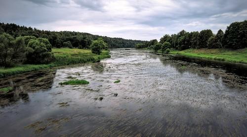 Москва-река у деревни Васильевское. Московская область