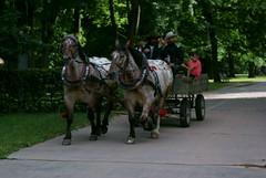 Sony Alpha A230 with Helios-44-2 - A Wagon in the Park (Kojotisko) Tags: streetphotography brno creativecommons czechrepublic streetphoto helios442 helios442258 legacylens legacylenses sonyalphaa230