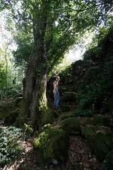 Escursionisti_01_light (foto_lamone) Tags: escursionisti colatalavica selvadellamone wwwselvalamoneit