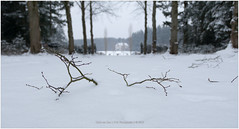Winterwonderland, Netherlands (CvK Photography) Tags: canon color cvk enschede estate europe landscape nature netherlands outdoor overijssel snow twente vanheek winter
