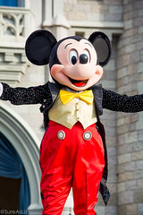 DSC_0025_WS (SureAsLiz) Tags: disney disneyworld waltdisneyworld wdw magickingdom magickingdomwelcomeshow letthemagicbegin mickeymouse mickey cinderella castle
