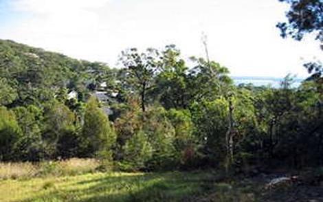 19 Navala Avenue, Nelson Bay NSW 2315