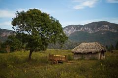 Pastoral (Steve Vallis) Tags: cuba vinales pastoral rural scene landscape tree trailer hut green mountains