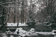 Cold cold Winter (sinnesblicke) Tags: munich münchen englischergarten sonyrx100m3 bach winter cold snow ice bavaria bayern germany deutschland outdoot travel city europe landscape nature
