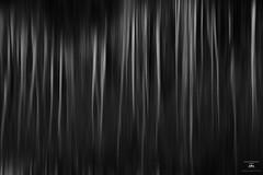 Under the veil (Jason Hummel Photography) Tags: lifeanddeath aspen blackandwhite reflection lake utah veil philosophy