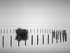Niebla en el lago. (Luis Mª) Tags: lago niebla abstracto paisaje afiiae